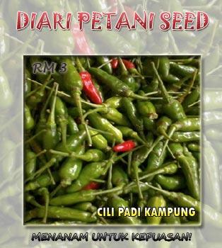 cover-cili-padi-kampung